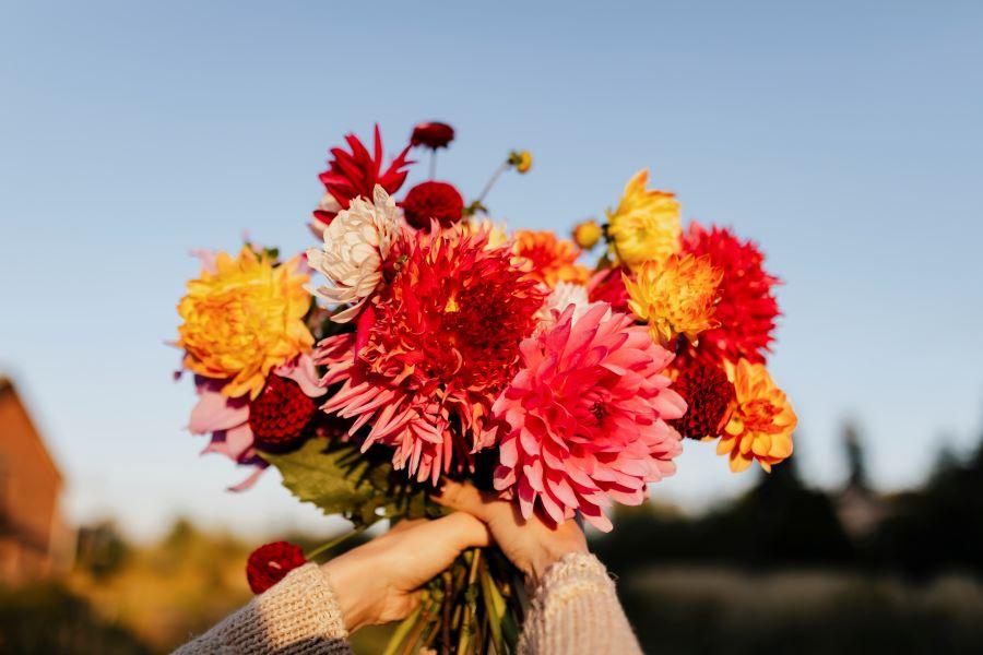 """Consegna fiori a Roma: il modo più bello per dire """"ti voglio bene"""""""